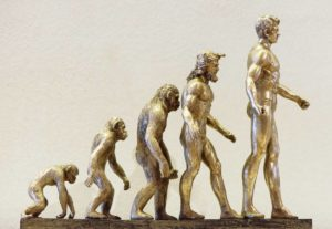 ExploraAvila Evolucion humana Pixabay